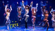 Cats - The Musical HD