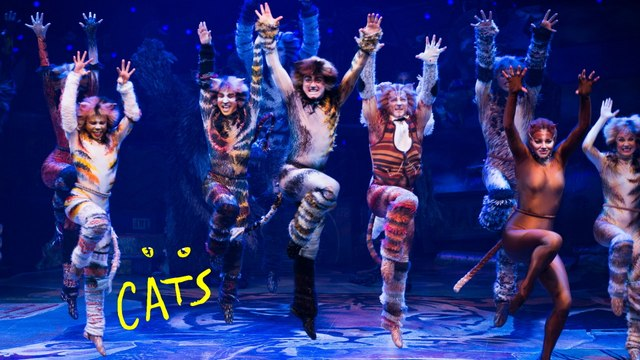 Cats The Musical HD