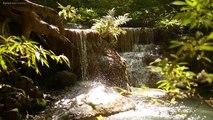ZEN Music - 4K, ZEN River with Beautiful Zen Garden Waterfall, Beautiful Nature Stream for Stress Relief