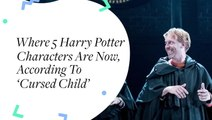 Where 5 Harry Potter Characters Are Now, According To Cursed Child