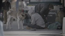 Non-Profit Provides Care For Homeless People's Pets