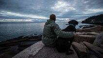 US Veteran Takes Terminally-Ill Dog On Last Road Trip