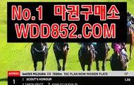코리아레이스 WDD852.COM
