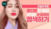 How To Dye Your Hair Without Any Damage (토너 토닝작업) 손상없이 염색하는 방법 wIth.솔미_요상한TV