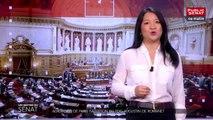 Aéroports de Paris : audition du PDG Augustin de Romanet - Les matins du Sénat (22/05/2019)