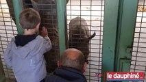 PEAUGRES Basile (5 ans) a rencontré Basile le rhinocéros blanc