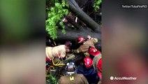 Firefighters rescue man trapped under fallen tree