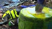 """Opération """"nature morte"""" de militants écolos chez Bayer-Monsanto"""