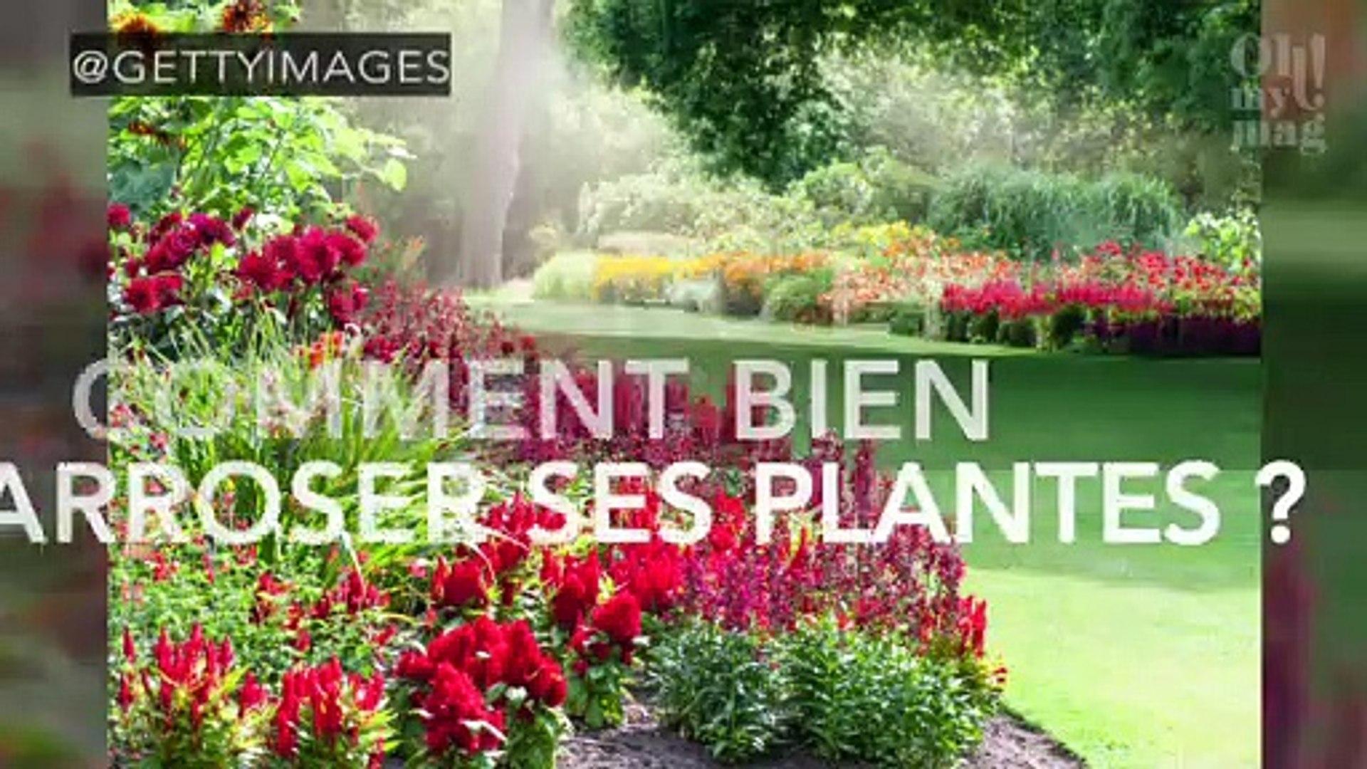 Comment Arroser Jardin Pendant Vacances jardin : quand et comment bien arroser ses plantes ?