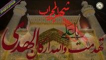 لطمية لمناسبة إستشهاد أمير المؤمنين الإمام علي عليه أفضل الصلاة والسلام ٢١ من شهر رمضان المبارك