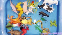 Learn Sea Animals Wild Animals Farm Animals With Toys in Water Pool | Part 2 |  BeBe Toys