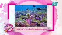 เมย์ เอ๋ โอ๋ Mama's talk | เปิดที่เที่ยวใหม่น่าเช็คอิน ในประเทศไทย | 24 พ.ค. 62 (3/3)