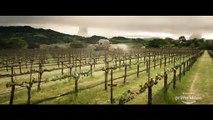 Star Trek Picard : le premier teaser de la série Amazon (VO)