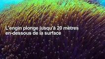 Un sous-marin Uber pour découvrir la Grande barrière de corail