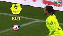 But Loïc REMY (35ème) / Stade Rennais FC - LOSC - (3-1) - (SRFC-LOSC) / 2018-19