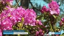 Cherbourg : un jardin unique en France