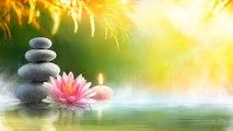 Relaxing Reiki Music: Massage Music, SPA | 8 HOURS - Meditation Music, Yoga Music, Reiki Healing, for Deep Sleep