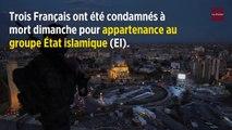 Irak : 3 Français condamnés à mort pour appartenance à Daech