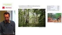 """2 - Maxime ZUCCA - Rencontre technique """"Continuités écologiques et forêts"""" 2019"""