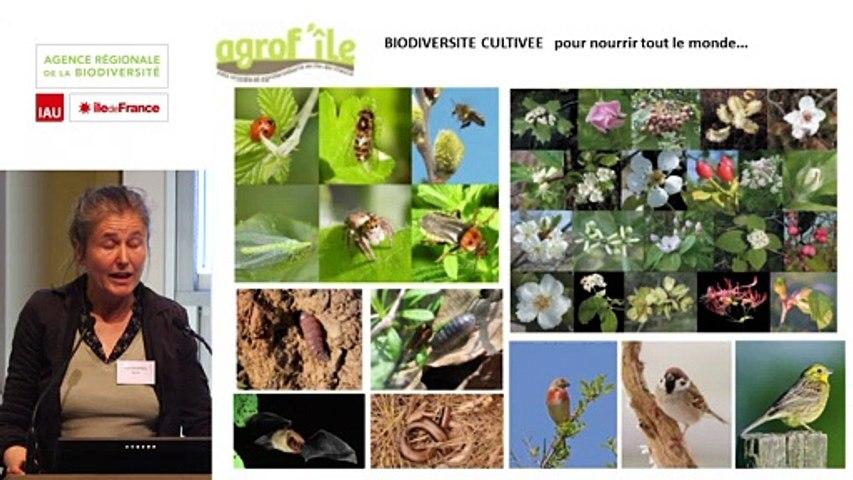 """3 - Agnès SOURISSEAU - Rencontre technique """"Continuités écologiques et forêts"""" 2019"""