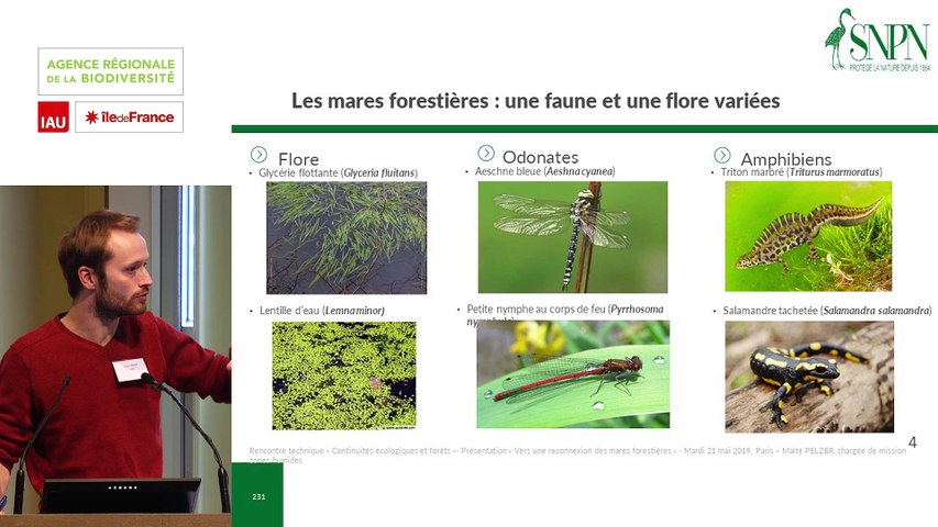 """13  - Maïté PELZER et Florian ANDRÉ - Rencontre technique """"Continuités écologiques et forêts"""" 2019"""
