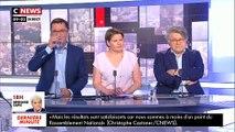 """La riposte de Gilbert Collard: """"Daniel Cohn-Bendit doit être en ce moment dans un Ephad que lui a réservé Macron!"""" - VIDEO"""