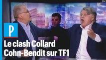 « Ordure ! » : Gilbert Collard et Daniel Cohn-Bendit s'insultent en direct sur TF1