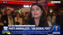 """Européennes: récoltant plus de 2% des voix, la tête de liste du parti animaliste estime que c'est """"un signal fort"""""""