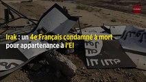 Irak : un 4e Français condamné à mort pour appartenance à l'EI