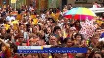 Elections européennes, marche des fiertés, ligne Grenoble Gap - 27 MAI 2019
