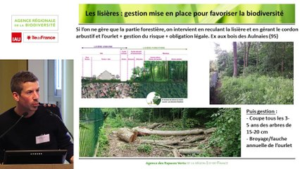 """7 - Jean-François ANTOINE - Rencontre technique """"Continuités écologiques et forêts"""" 2019"""
