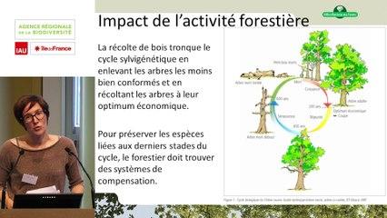 """11 - Élise AVENAS  - Rencontre technique """"Continuités écologiques et forêts"""" 2019"""