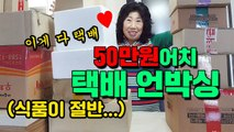 Unboxing $500 Worth of Packages 50만원어치 택배 언박싱 (식품이 절반..) [박막례 할머니]