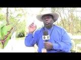 "Eugene ""Hideaway"" Bridges Interview at Bluesfest in Byron Bay (Part Two)"