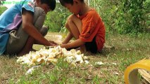 Amazing Fishing Catch Catfish by Using Jackfruit Fruit Fish Trap