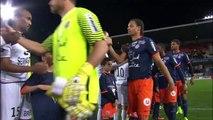 J28 Montpellier Hérault SC - EA Guingamp (1-1) - Résumé - (MHSC - EAG)   2016-17
