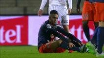 J18 Montpellier Hérault SC - EA Guingamp (2-1) - Résumé - (MHSC - EAG)   2015-16