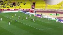 J36 AS Monaco - EA Guingamp (3-2) - Résumé - (ASM - EAG)   2015-16