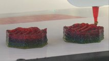 3D Printer Is Making Food Supplements To Help Your Diet