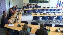 Commission des affaires européennes : Table ronde sur le résultat des élections européennes - Mardi 28 mai 2019