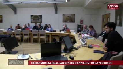 François Patriat - Public Sénat mercredi 29 mai 2019
