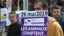 Elections européennes : le surprenant succès du Parti Animaliste