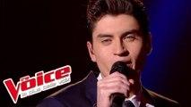Avicii – Wake Me Up | David Thibault | The Voice France 2015 | Prime 1