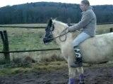 Pepette,etoile saut liberté et a cheval ! 009