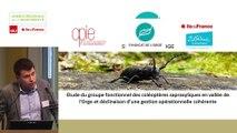 """17  - Lucile FERRIOT et Xavier HOUARD - Rencontre technique """"Continuités écologiques et forêts"""" 2019"""