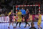 Nantes-Tremblay, le résumé | J25 Lidl Starligue 18-19