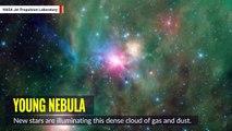 NASA Telescope Captures Stunning Celestial Mosaic