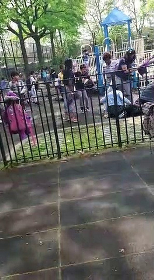 Sheepshead Bay playground assault part 1
