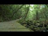 【旅遊】清涼步道/內湖大溝溪親水步道 遊覽豐富生態