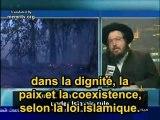 Les musulmans les juifs et les sionistes